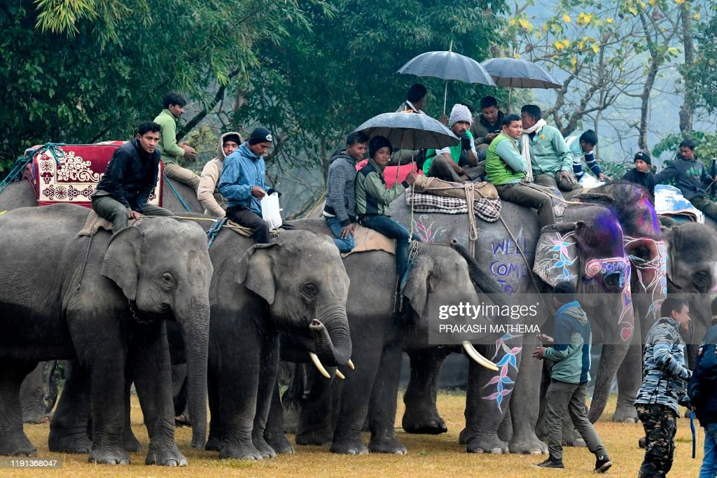 NEPAL-FESTIVAL-ELEPHANT : News Photo
