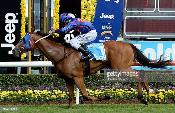 Mahuta wins the Guineas for two year olds during the Magic Millions Raceday at Gold Coast Turf Club on January 9 2016 in Gold Coast Australia