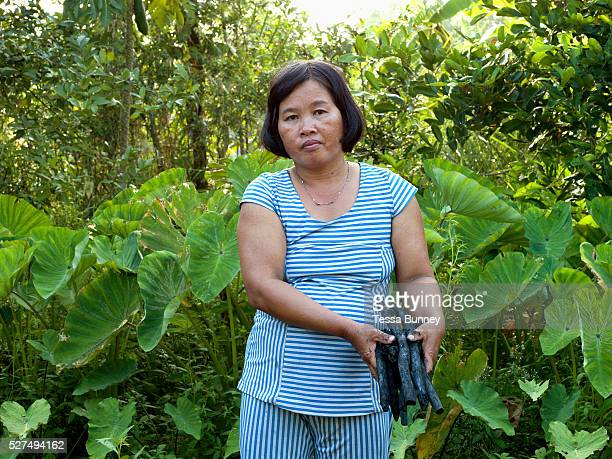 Mai Thi Chau and her husband Van Trinh Nguyen are farmers and natural honey collectors in Number 13 Village Nguyen Phich commune in the southern...