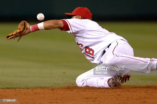 Maicer Izturis of the Los Angeles Angels of Anaheim makes a diving stop during 40 victory over the Tampa Bay Devil Rays at Angel Stadium in Anaheim...