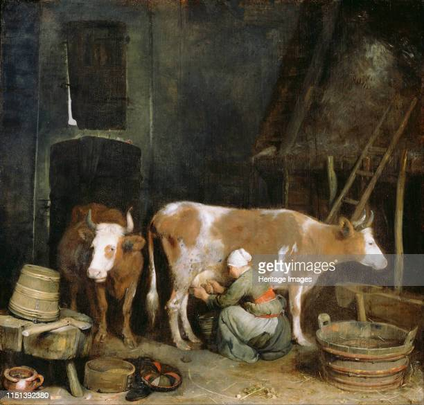 A Maid Milking a Cow in a Barn 16521654 Found in the collection of the J Paul Getty Museum Los Angeles Artist Ter Borch Gerard the Younger
