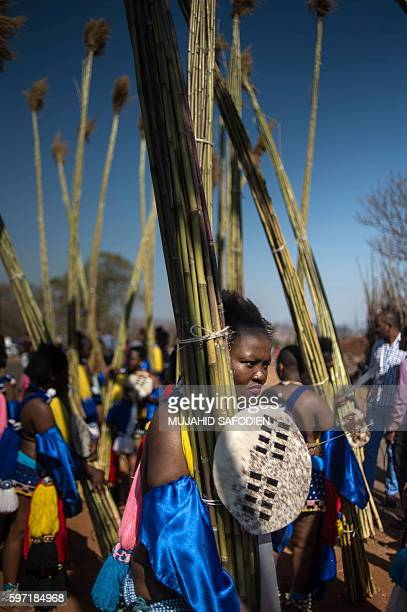 Maidens carry and lay reeds as they look on during the annual royal Reed Dance at the Ludzidzini Royal palace on August 28 2016 in Lobamba Swaziland...