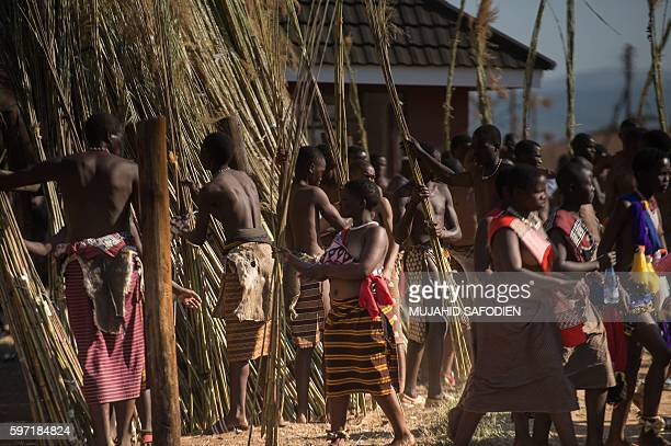 Maidens carry and lay reeds while they sing and dance during the annual royal Reed Dance at the Ludzidzini Royal palace on August 28 2016 in Lobamba...