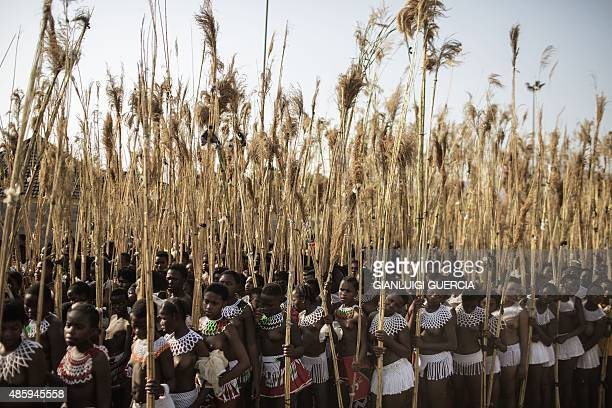 Maidens from South Africa sing and dance during the first day of the annual royal reed dance at the Ludzidzini Royal palace on August 30 2015 in...