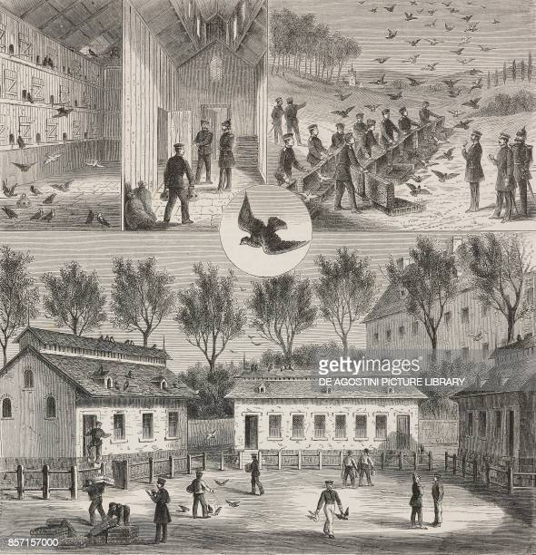A mail office using carrier pigeons in Germany Year 1 Vol II No 27 and 28 June 7 1874