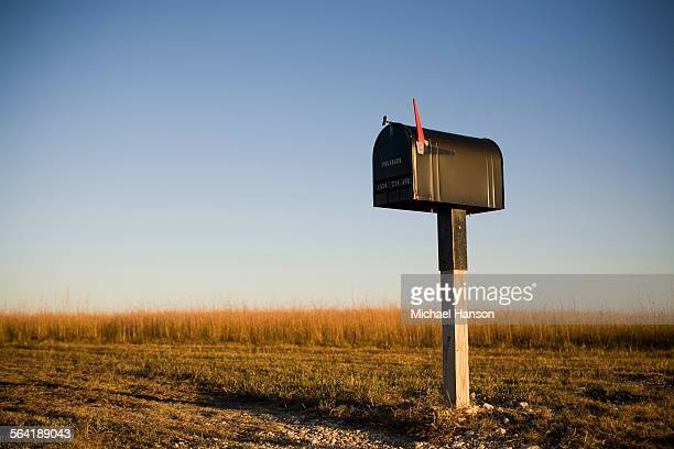 a mailbox stands alone in a kansas corn field as the sun sets beyond the horizon. - mailbox stock pictures, royalty-free photos & images