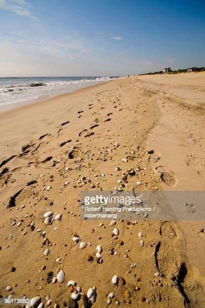 Main Beach, East Hampton, the Hamptons, Long Island, New York State, United States of America, North America