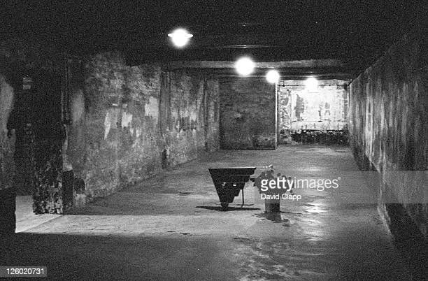 main gas chamber with memorial, birkenau concentration camp, auschwitz, poland - birkenau stock pictures, royalty-free photos & images