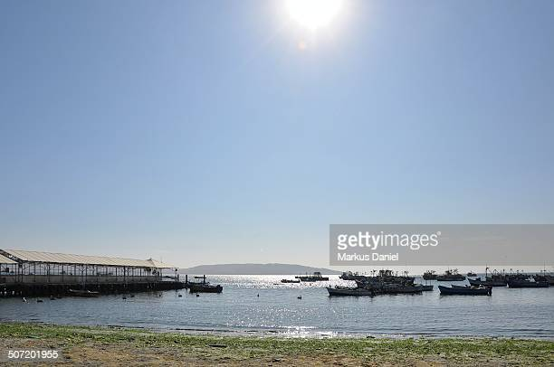 "main pier in paracas, peru - ""markus daniel"" stock pictures, royalty-free photos & images"