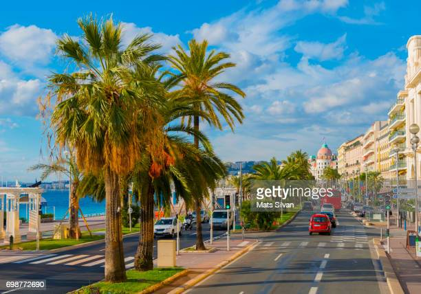 Main Street with Palm Trees and Building in Nice