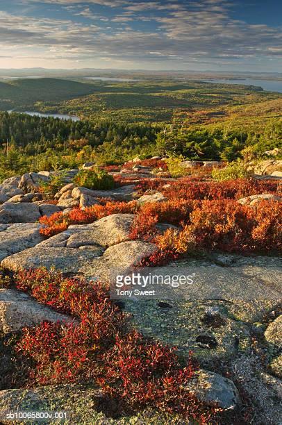 USA, Maine, Acadia National Park scenic