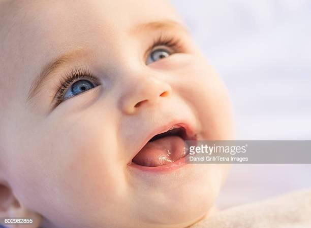 usa, maine, camden, portrait of laughing baby boy (6-11 months) - boca humana fotografías e imágenes de stock