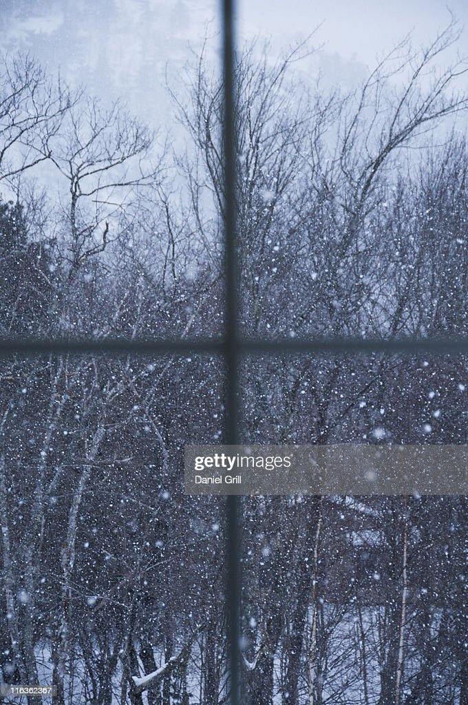 USA, Maine, Camden, window overlooking snowy forest : Stock Photo