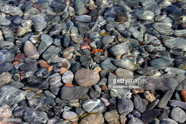 Maine Coast New England USA Lubec stones under water