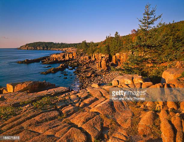 Maine Coastline- (P