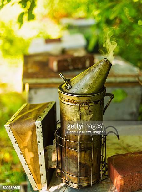 USA, Maine, Hope, Bee smoker on beehive