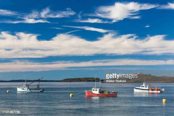 usa, maine, lubec, fishing boats in lubec harbor - lubec stock photos and pictures