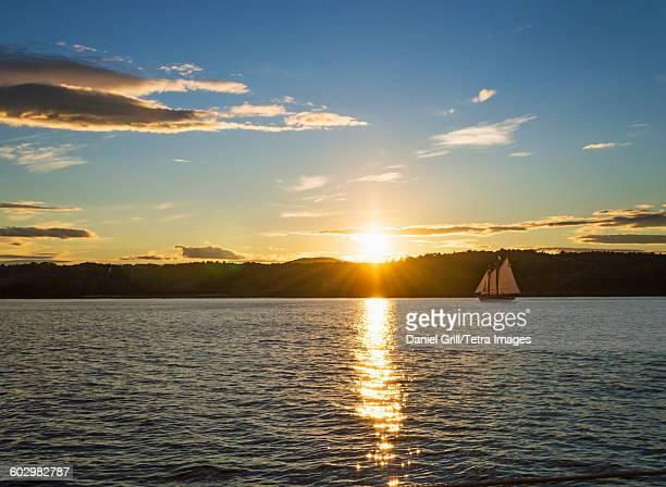 USA, Maine, Portland, Tranquil seascape with sailboat at sunrise