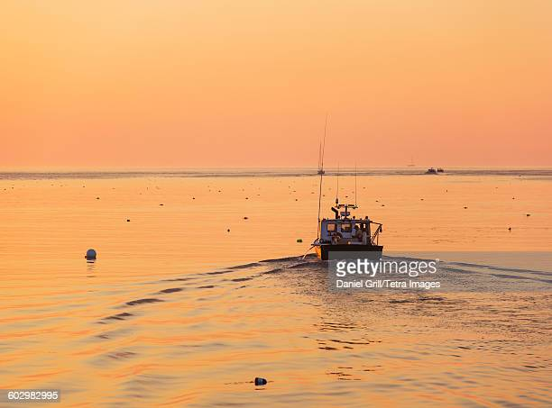 usa, maine, st. george, boat on sea at sunrise - lobster fishing stock photos and pictures