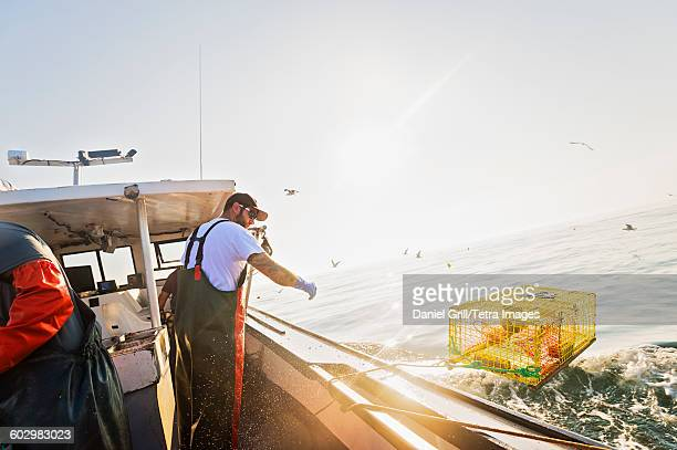 usa, maine, st. george, fisherman working on fishing boat - lobster fishing stock photos and pictures