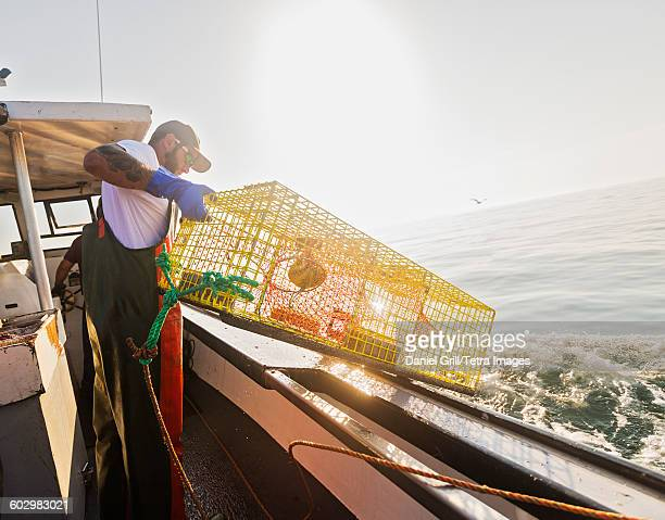usa, maine, st. george, fishermen throwing lobster trap - lobster fishing stock photos and pictures