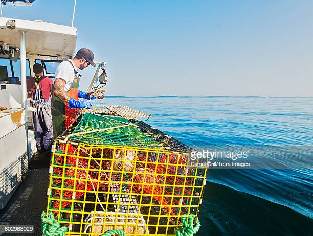 USA, Maine, St. George, Two fishermen working on boat