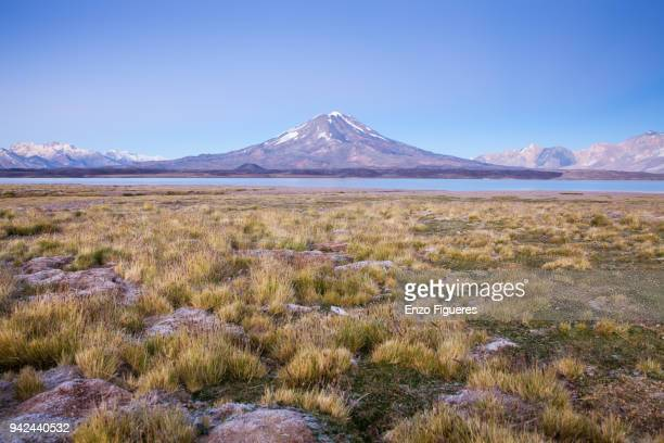 Maipo Volcano and the Laguna del Diamante at Dawn