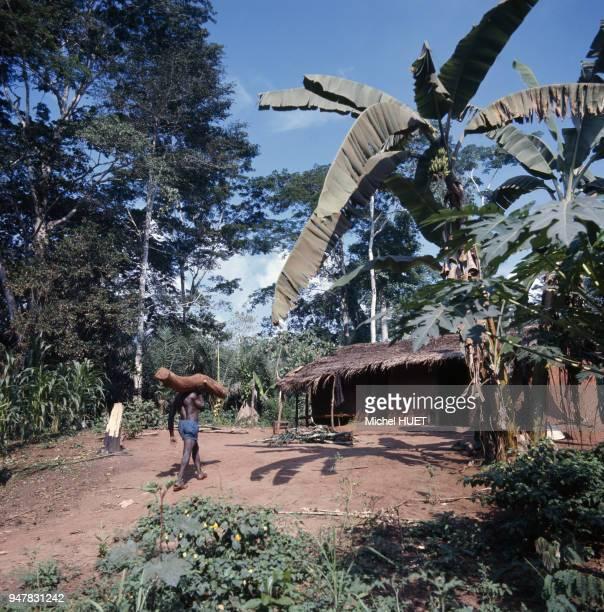 Maison traditionnelle dans un village au Cameroun.