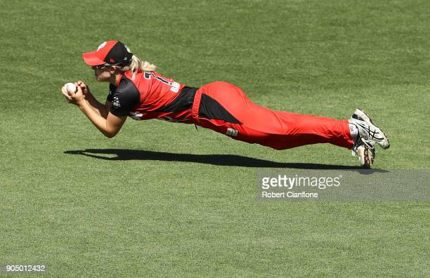 Maitlin Brown of the Renegades takes a catch to dismiss Nicola Hancock of the Hurricanes during the Women's Big Bash League match between the Hobart...