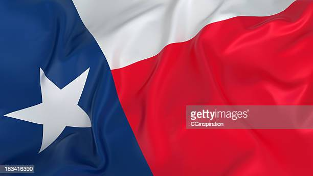 Majestic Flag of Texas