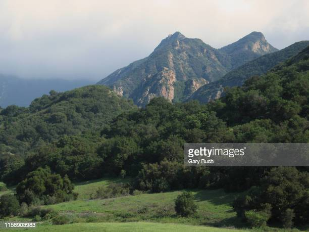 majestic mountain peaks with lush green forest - calabasas stock photos and pictures