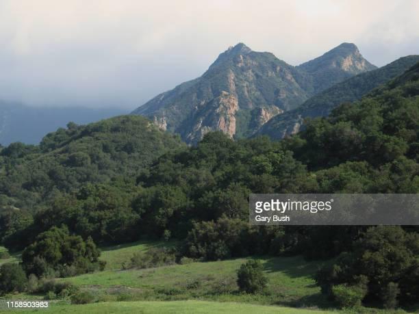 majestic mountain peaks with lush green forest - calabasas fotografías e imágenes de stock