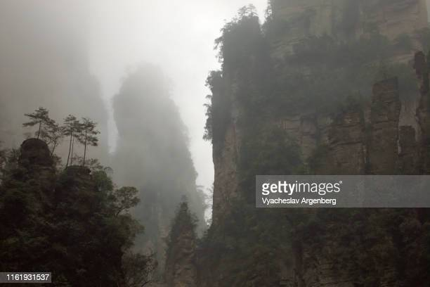 majestic rock formaions in fog, cloudy weather, extraterrestrial scenery, hunan, china - pandora peaks fotografías e imágenes de stock