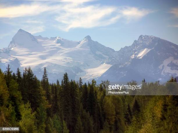 Majestic Snow Capped Peaks of the Canadian Rockies