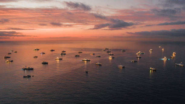 Majestic sunset view showing a group of super yachts moored in the bay, Monaco
