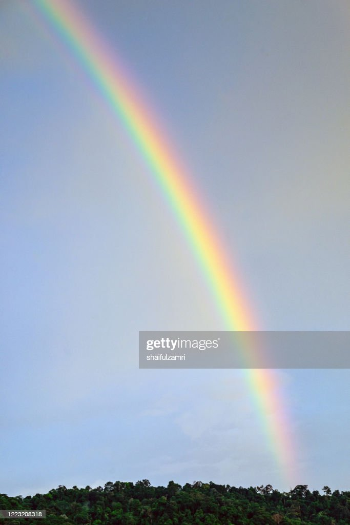 Majestic view of rainbow over rain forest. : Stock Photo