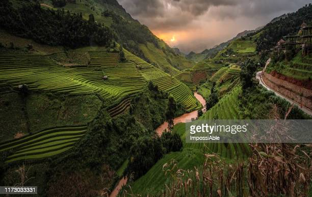majestic view of rice terrace on the mountain at sunset, mu cang chai, vietnam - impossiable stock pictures, royalty-free photos & images