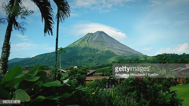 majestic volcano towering over green landscape  - volcanic terrain stock photos and pictures