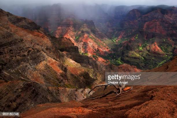 majestic waimea canyon, kauai, hawaii - waimea canyon stock pictures, royalty-free photos & images