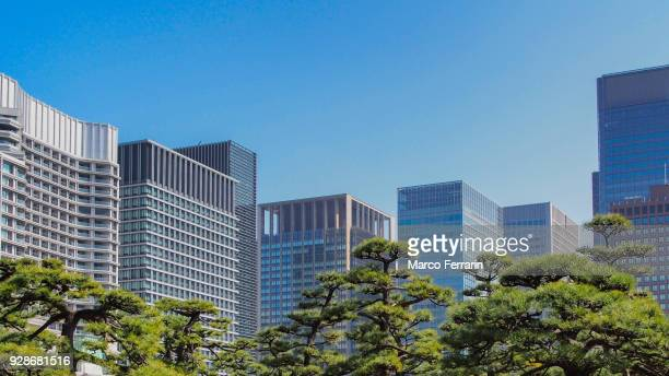 major commercial district of tokyo, marunouchi cityscape in the daytime - 丸の内 ストックフォトと画像