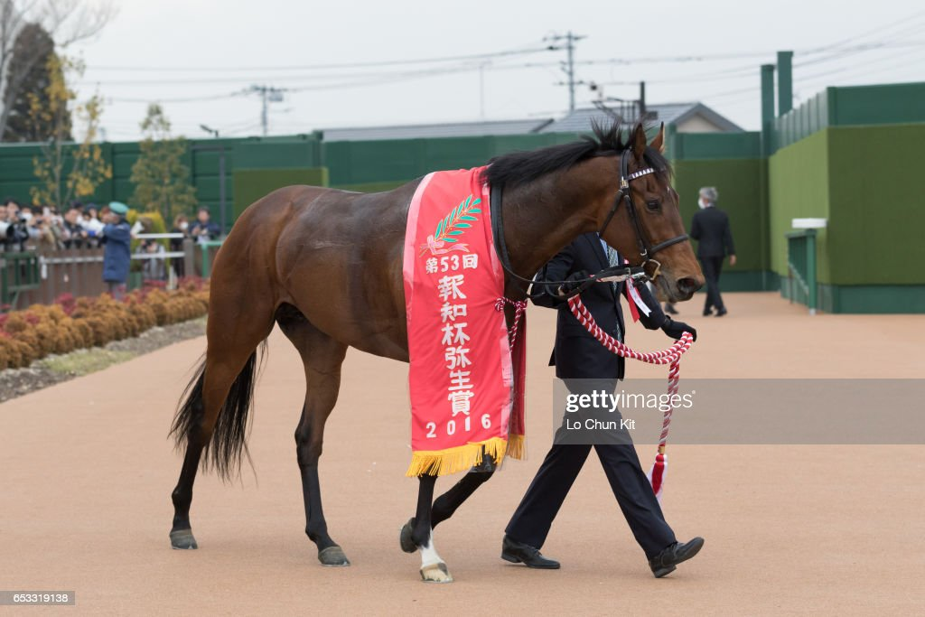 Makahiki wins the Race 11 Yayoi Sho - Japanese 2000 Guineas Trial (G2 2000m) at Nakayama Racecourse on March 6, 2016 in Funabashi, Chiba, Japan.