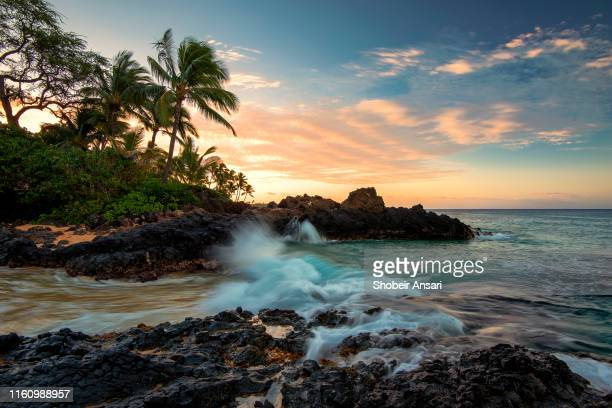 makena cove (secret beach), maui, hawaii - category:census-designated_places_in_honolulu_county,_hawaii stock pictures, royalty-free photos & images
