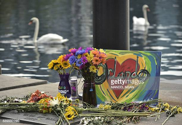 A makeshift memorial for the victims of the Pulse nightclub shooting is seen on June 13 2016 at Lake Eola in Orlando Florida The American gunman who...