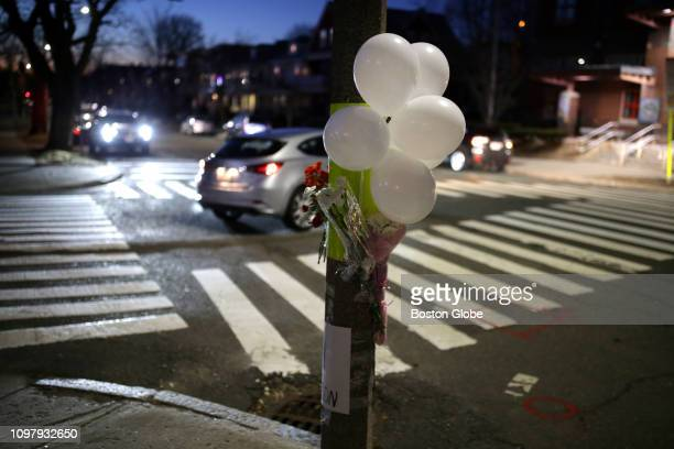 A makeshift memorial for victims of a hitandrun crash at Powder House Boulevard and Hardan Road in Somerville MA is pictured on Feb 9 2019 A memorial...