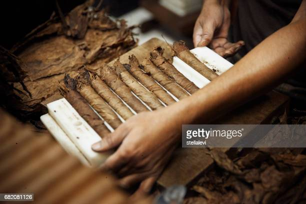 Making a Cuban cigars