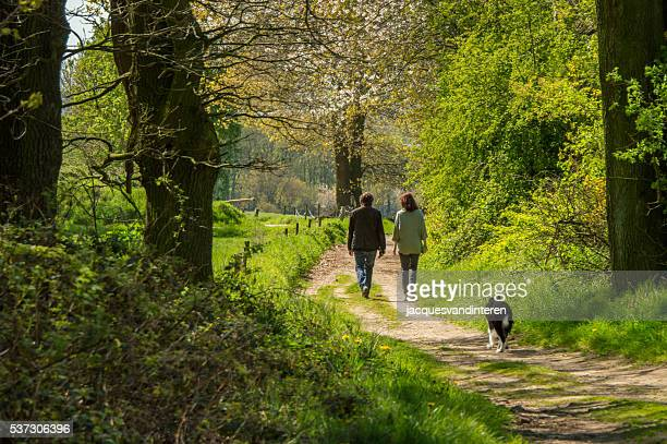 making a walk in the fields in springtime - bloesem stockfoto's en -beelden