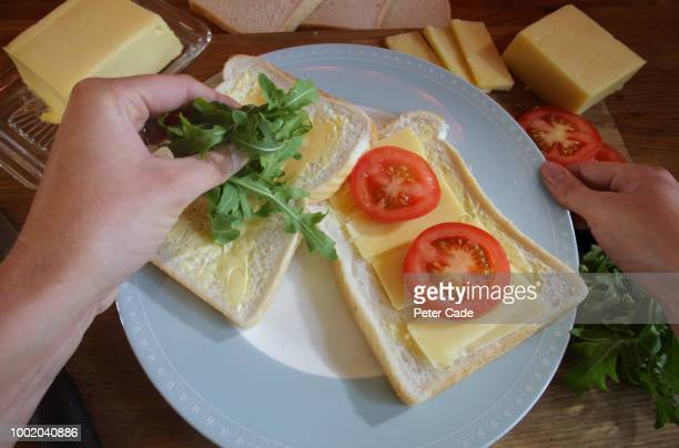 Making cheese and tomato sandwich