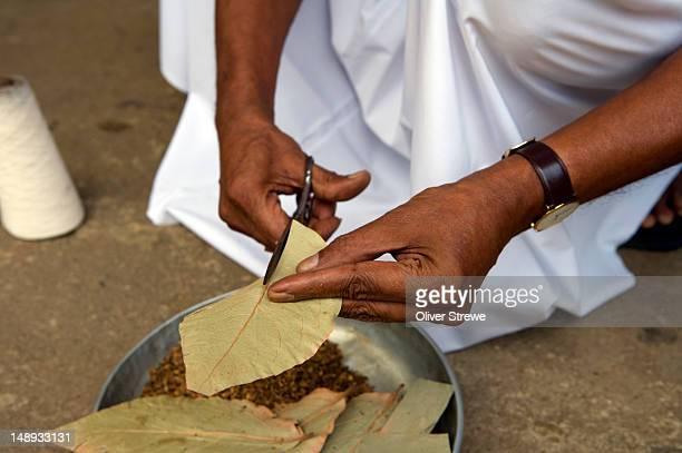 Making cigaretees at Beedi factory (Sri Lankan cigarette).