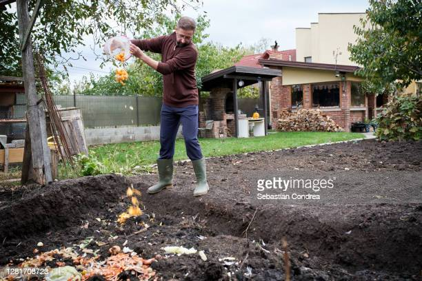 making compost, domestic waste for compost from fruits and vegetables in garden. - heap stock pictures, royalty-free photos & images