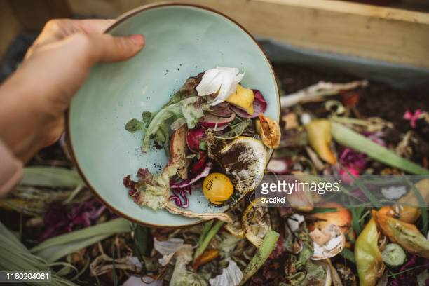 making compost from leftovers - food stock pictures, royalty-free photos & images